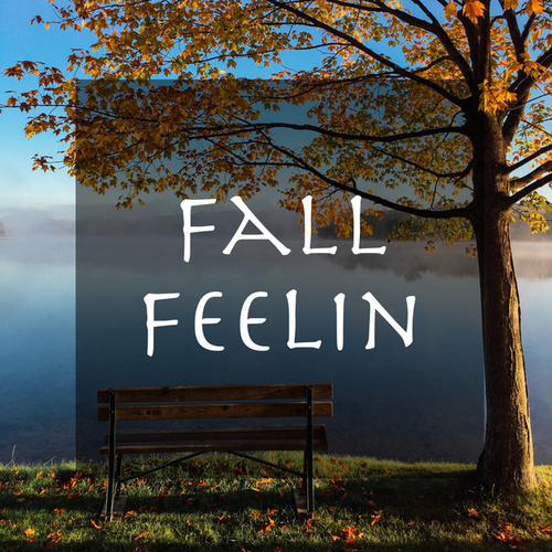 Autumnの画像
