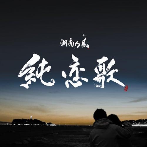 純恋歌の画像