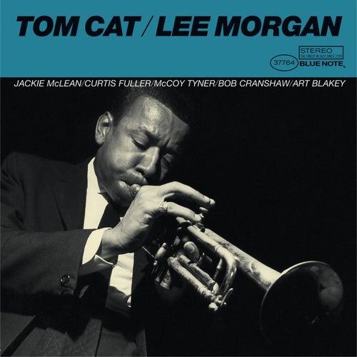 Tom Catの画像