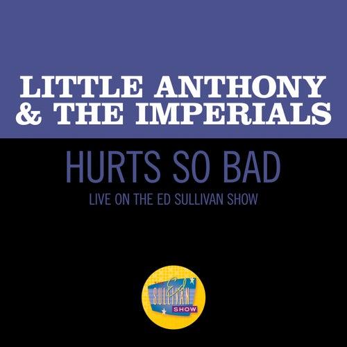 Hurts So Bad (Live On The Ed Sullivan Show, March 28, 1965)の画像