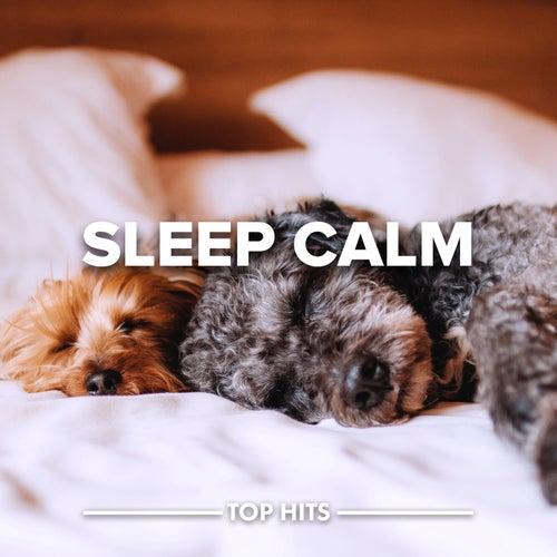 Sleep Calmの画像
