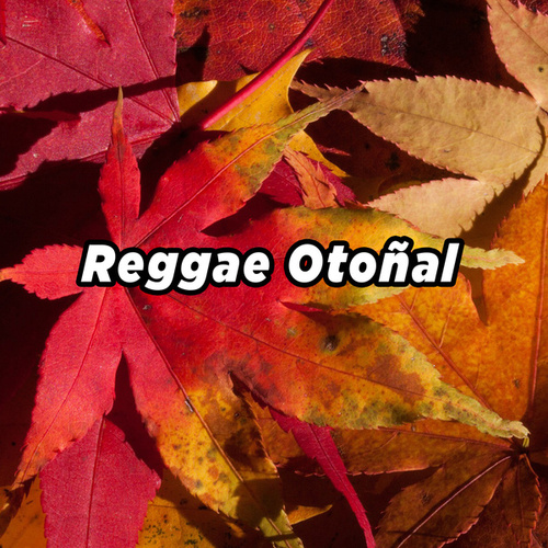 Reggae Otoñalの画像