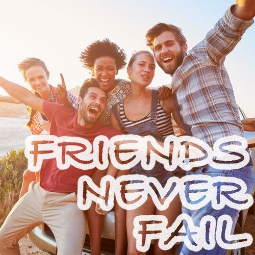 Friends Never Failの画像