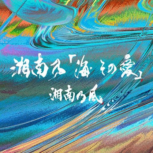 湘南乃「海 その愛」の画像