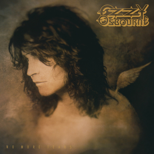 No More Tears (30th Anniversary Expanded Edition)の画像