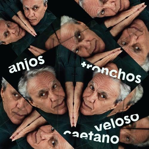 Anjos Tronchosの画像